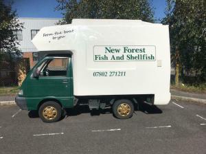 Fish Van for sale